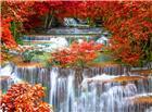 溪流瀑布红色枫叶秋天图片