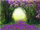 紫色花藤拱形门唯美浪漫图片