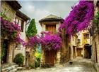 花藤盘绕的欧洲古建筑小巷图片