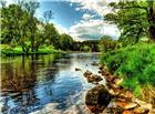 石桥小溪绿树唯美风景图片