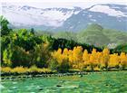 雪山绿树小溪唯美图片