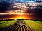刚犁过的农田落日美景图片