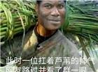 一位扛着芦苇的帅气网友路过并看了群一眼