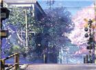 火车道口樱花树春天唯美图片