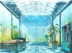 被植物包围的玻璃房间内清新图片