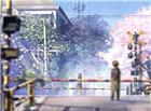 穿过城市的铁轨樱花环绕男生女生对视