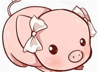 学生猪动漫图片