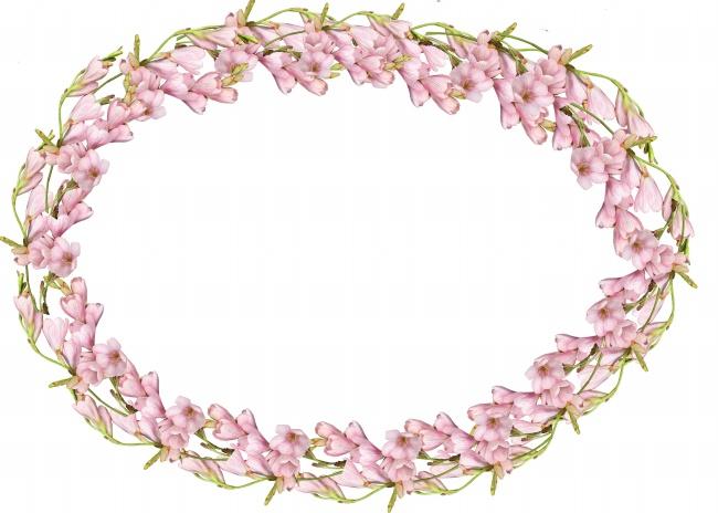 粉色花圈素材图片(点击浏览下一张趣图)