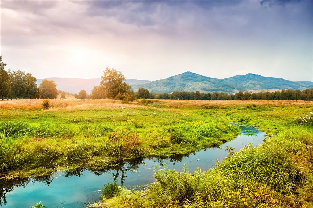 长满野草的小溪湿地图片(点击浏览下一张趣图)