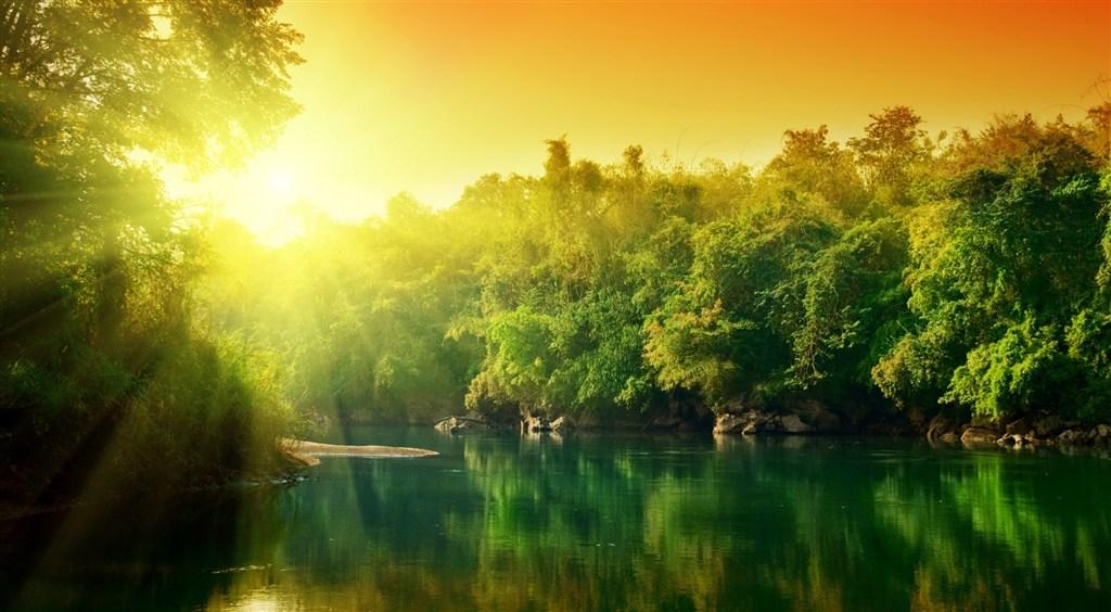 被绿色植被包围的湖面阳光图片(点击浏览下一张趣图)
