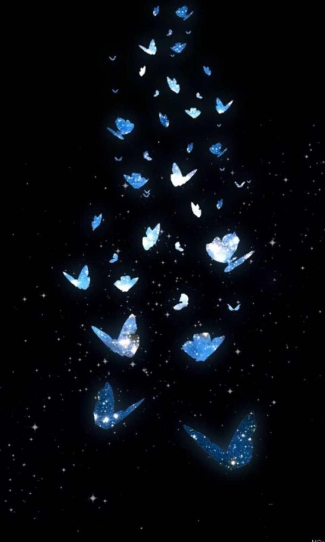 蓝色蝴蝶黑色背景绚丽图片(点击浏览下一张趣图)