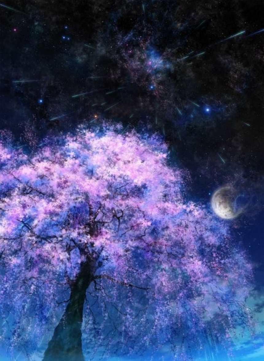 月亮下的盛开花朵的大树唯美图片(点击浏览下一张趣图)