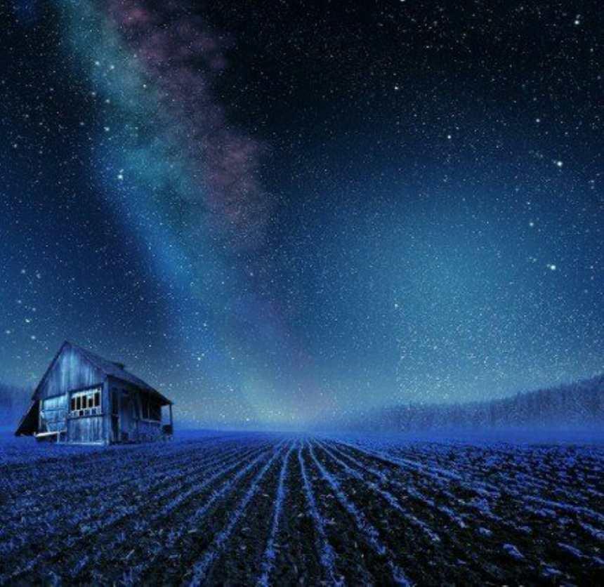 夜晚在薰衣草花海里面一座孤零零的草屋(点击浏览下一张趣图)