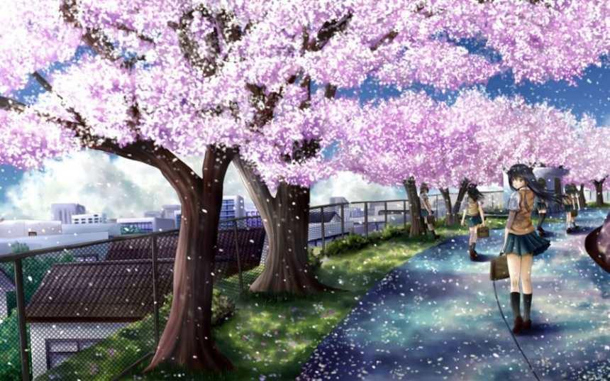 种满樱花树盛开的小路上长发女孩回头瞬间图片(点击浏览下一张趣图)