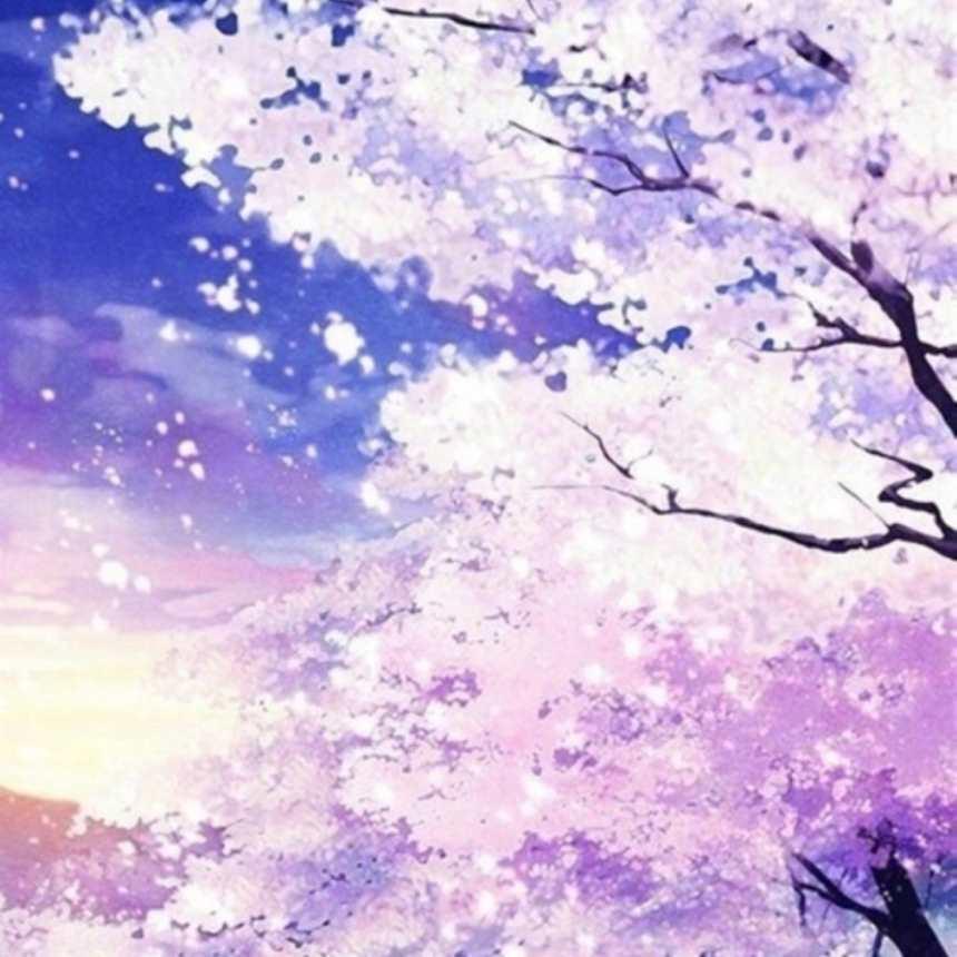盛开的樱花树浪漫唯美动漫图片(点击浏览下一张趣图)